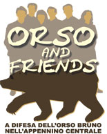 Orso and Friends