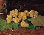 Immagine: (tuber magnatum pico) o tartufo bianco di Campoli Appennino