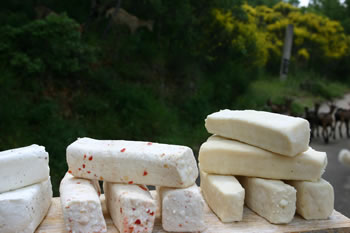 LA MARZOLINA (formaggio di capra)